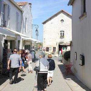 Mornac.St-Sulpice.Oiseaux-037.JPG