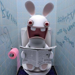 http://img.over-blog.com/300x300/1/94/80/30/lapin_cretin-WC.jpg