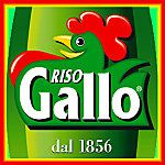 riso_gallo.jpg
