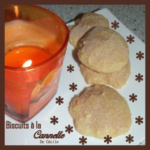 Biscuits-a-la-cannelle-by-Nath-.jpg