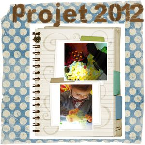 projet 2012