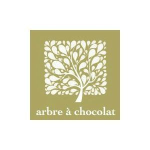arbre  chocolat
