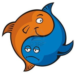 5871212-cartoon-bleu-et-orange-poissons-yin-yang-ou-pisces-.jpg