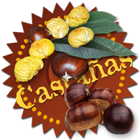 Baadge-castanas200.png