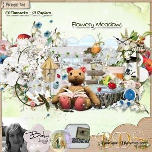 Collaboratif_flowery_Maedow_pv.jpg