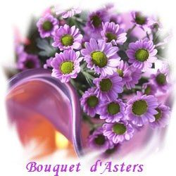 Bouquet d'Asters