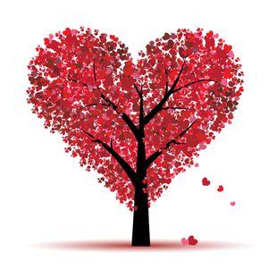Saint valentin symbole