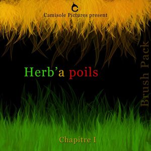 brush pack herb'a poil chapitre 1 pt