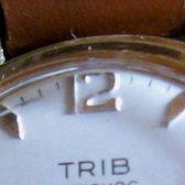 Trib2_face0.jpg