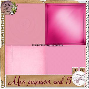 pv-papiers-vol5-19b13cd.jpg