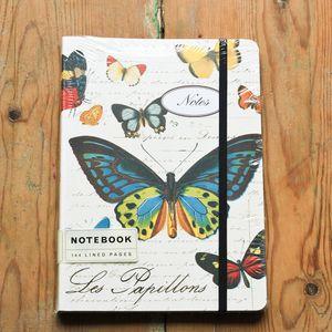cahier-papillon-cavallini---co.jpg