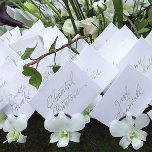 fleurs marque place