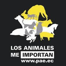 proteccion_animal21.jpg