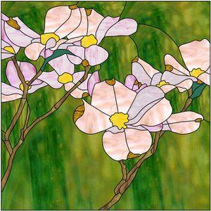 Cornouiller-en-fleur.jpg