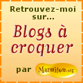 blog  croquer