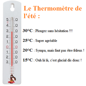 thermometre-presentation.png