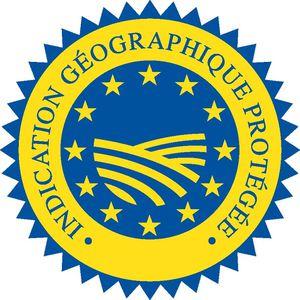 logo_igp.jpg