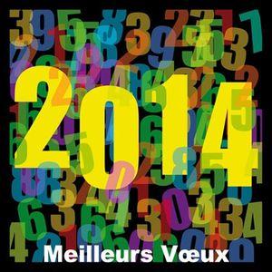 Voeux-2014.jpg