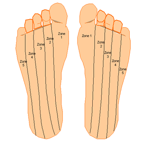 The Foot Reflexology From A To Z