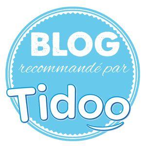 macaron blog tidoo