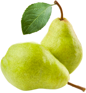 poire-Williams---2-fruits-verts.png