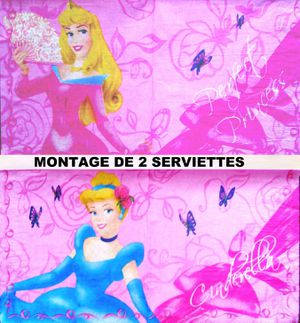 telecharger cendrillon 2