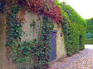 Les Blockhaus et Bunkers allemands cité Médicis à Saint-Germain-en-Laye (78100)