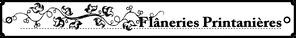 flanerieprintaniereGAB 13,01 x 1,67