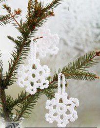 des étoiles de Noël