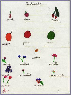 fruits et fleurs de l'ete