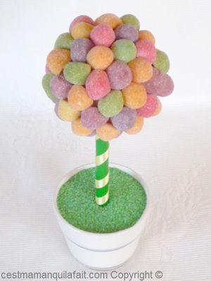 """Résultat de recherche d'images pour """"arbre à boules de gomme"""""""