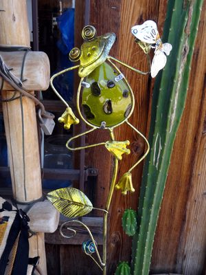 Apache Trail Goldfield Ghost Town grenouille