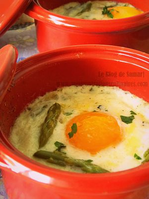 cocottes-oeuf-asperges
