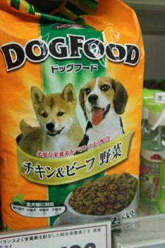 shiba-dog-food