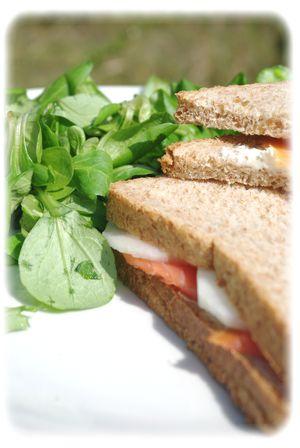 Sandwich au saumon IV