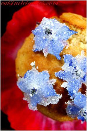 Muffins Gelée de Coquelicot MM#37 Duo 200
