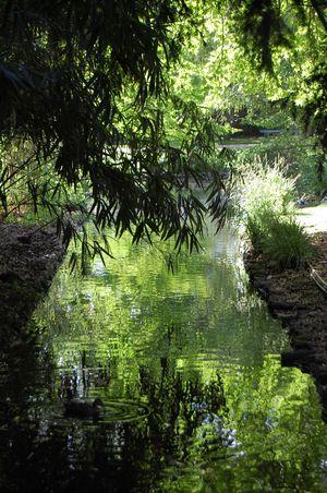 Tours Jardin botanique (6)