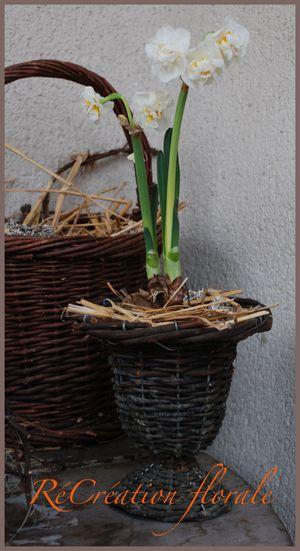 Créa printemps
