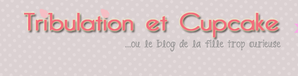 Capture-d-ecran-2012-03-12-a-11.18.40.png