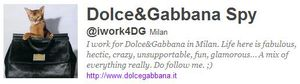 Dolce&Gabbana Spy: ''Shooting with Madonna today''