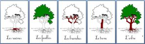 arbre-blog.jpg