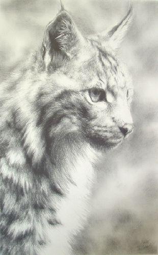 Lynx_by_ddrkonamix655.jpg