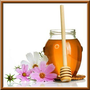 Honey-Photo--1-.jpg