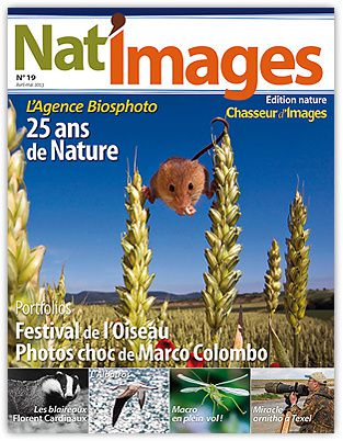 natimages-19-350.jpg