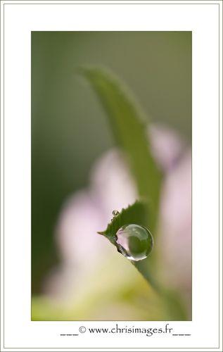 Annee-2011-3883--1280x768-.jpg