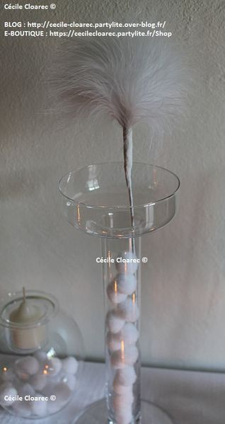 Cecile-Cloarec PartyLite Le-Blanc 012