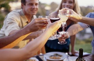 friends-toasting-wine-glasses-at-picnic.jpg