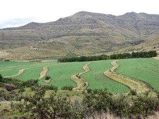 Afrique-du-Sud-5755.JPG