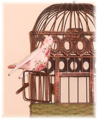 Oiseau Christelle 03