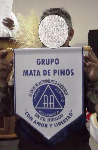 MEXIQUE 893 grupo mata de pinos